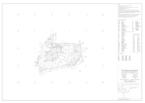 1491-Existing Site Plan